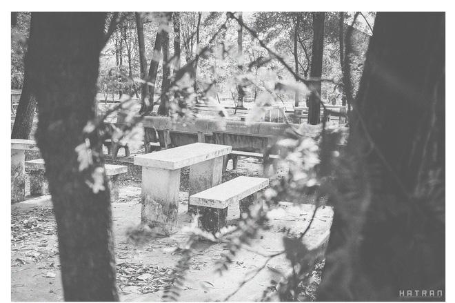 Độc bàn trong vườn trường dùng để các cặp đôi ngôi tâm sự hoặc bạn bè học bài