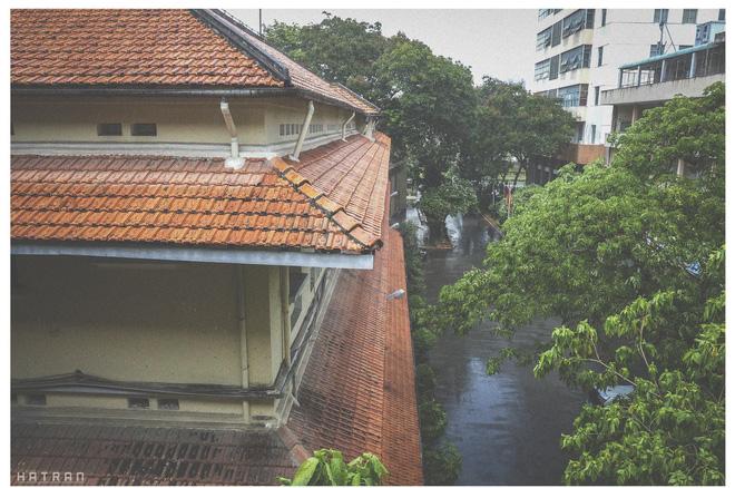 Góc trường sau cơn mưa rào