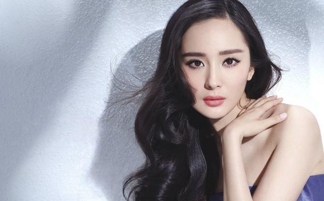 Không chỉ xinh đẹp, giỏi giang mà Dương Mịch còn học rất giỏi.