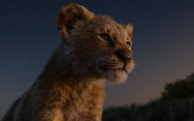 The Lion King thu 1 tỷ USD nhưng Disney không thể đi đường dài nếu tiếp tục làm phim như vậy! ảnh 0