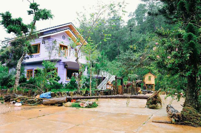 Cảnh tan hoang của Ma Rừng Lữ Quán sau cơn lũ.