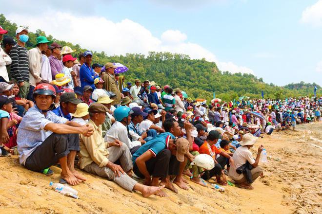 Có gì bên trong Hội đua bò Bảy Núi khiến 2 vạn người đội nắng đến xem? ảnh 8