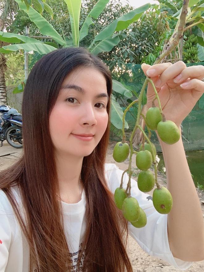 Cuộc sống ở nhà làm nông mùa dịch của Lý Nhã Kỳ và các sao Việt ảnh 11