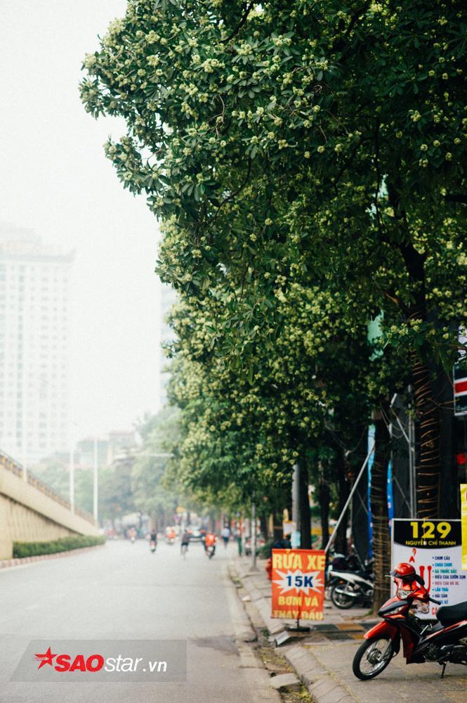 Góp mặt đầu tiên trong blacklist này là phố Nguyễn Chí Thanh.