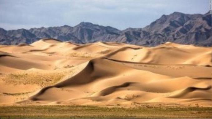Khác với sa mạc Sahara, Gobi chỉ có khoảng 3% là đụn cát, phần còn lại được đá, đồng cỏ khô và sỏi bao phủ. Với khí hậu vô cùng khắc nghiệt song số lượng động vật lại vô cùng phong phú với lạc đà 2 bướu, dê rừng, sói và đại bàng vàng.