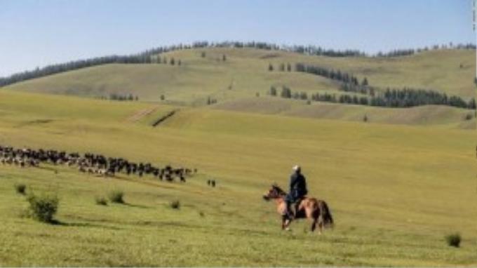 Những người chăn nuôi biết rõ từng con gia súc và hoàn toàn có thể nhận ra khi một con bị mất tích. Họ tin rằng các yếu tố tự nhiên như cỏ, đá và động vật chứa linh hồn và cần được trân trọng.