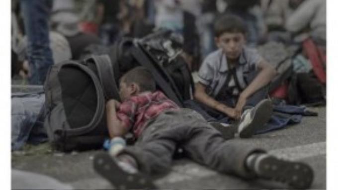 Ahmad, 7 tuổi, bị mảnh bom văng trúng đầu nhưng may mắn sống sót, em trai cậu bé bị vùi trong căn nhà sập sau trận đánh bom tại Idlib. Không nhà cửa, gia đình Ahmad phải chạy trốn. Đã 16 ngày nay em và cha mẹ phải ngủ ở nhà chờ xe buýt, trên mặt đường, trong rừng… trên đường đến biên giới Hungary đang bị đóng cửa.