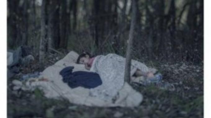Lamar, 5 tuổi, ngủ trong một khu rừng ở Hungary sau khi cha mẹ đưa em chạy trốn khỏi bom đạn ở Syria.