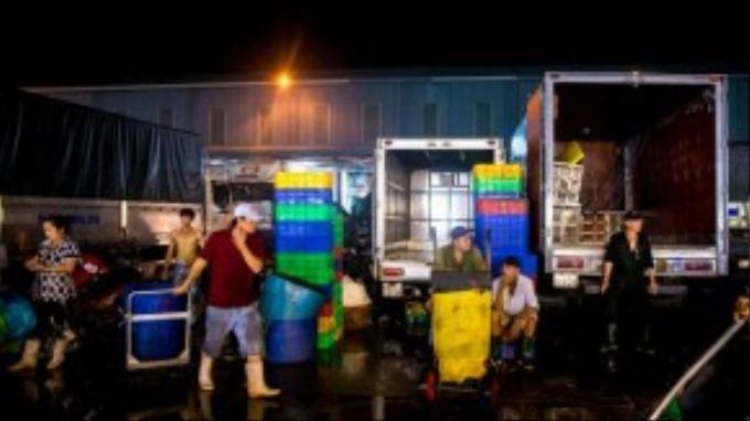 Hàng ngày có hơn hàng nghìn lượt xe hàng thủy hải sản tươi sống từ các miền Tây và miền Đông đổ về đây để gửi hàng cho các vựa hải sản tiêu thụ. Trung bình một ngày khoảng 500 tấn thủy hải sản được tiêu thụ tại khu chợ thủy hải sản Bình Điền.