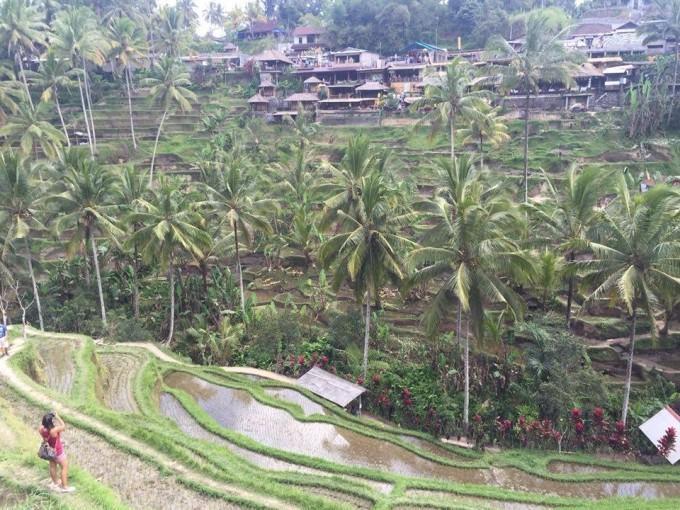 Thầy giáo 9x điển trai bật mí cách trả giá khi đến Bali ảnh 10