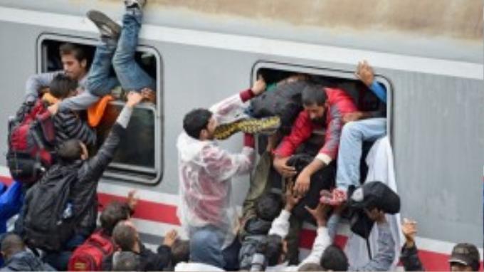 Người tị nạn chen nhau chui vào toa tàu từ Tovarnik đến Zagreb, Croatia hôm 20/9.