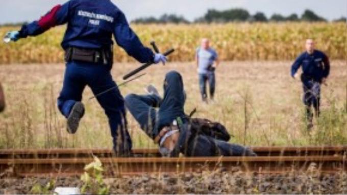 Một người tị nạn phá hàng rào và chạy trốn cảnh sát Hungary.