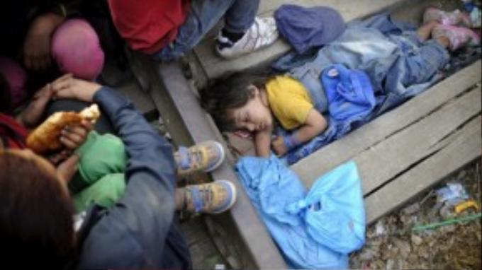 Những đứa trẻ phải ngủ ngay trên đường ray xe lửa khi cùng gia đình chờ được đi qua biên giới Macedonia – Hy Lạp.