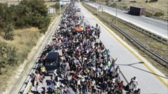 Đoàn người tị nạn biểu tình tại khu vực biên giới Thổ Nhĩ Kỳ – Hy Lạp.
