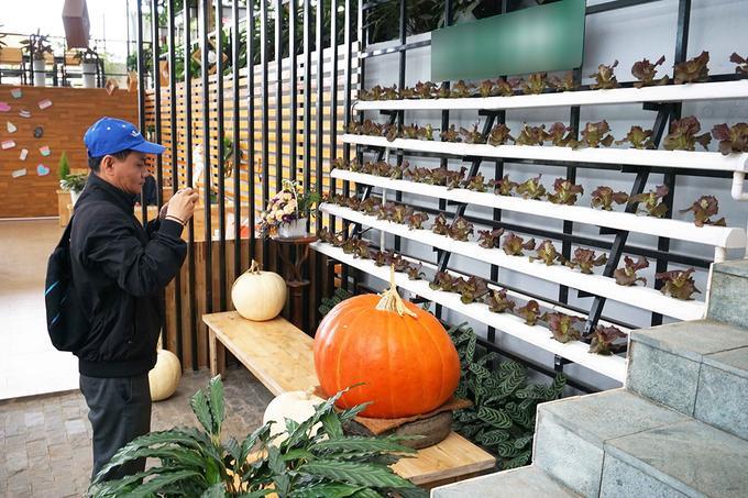 """Ông Trần Huy Đường, chủ quán cho biết ý tưởng về không gian cà phê này xuất hiện sau khi ông tham quan các mô hình du lịch nông nghiệp xanh ở Malaysia và Nhật Bản. """"Tất nhiên tôi không sao chép hoàn toàn mà dựa trên điều kiện thực tế, kinh nghiệm làm nông nghiệp công nghệ cao, và nhu cầu của du khách muốn tìm hiểu về sản xuất nông nghiệp sạch"""", ông Đường nói."""