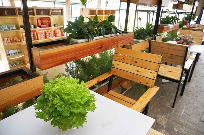 Bàn ghế được làm từ gỗ mang lại cảm giác gần gũi.