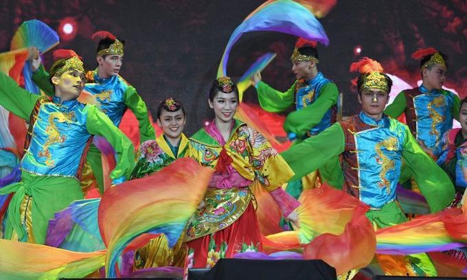 Nhiều chương trình nghệ thuật cũng được chính quyền Singapore tổ chức để chào mừng năm Kỷ Hợi.