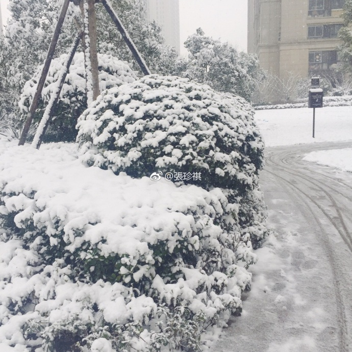 Nhìn tuyết rơi trắng xóa ở nơi diễn ra chung kết U23 Việt Nam  Uzbekistan, người hâm mộ nghĩ gì? ảnh 11