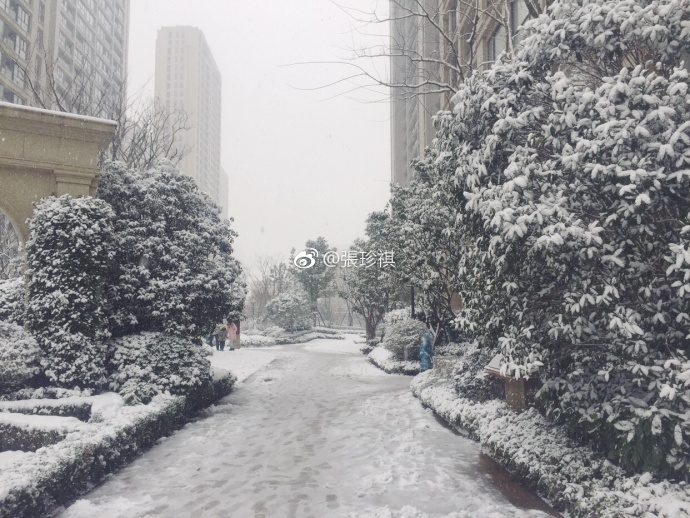 Vào thời điểm 20h00 ngày 24/1, lượng tuyết rơi dày khoảng 0,3 mm.