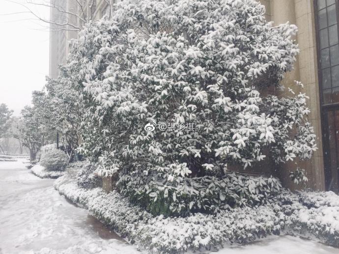 Tuyết dự kiến sẽ dần và rơi nhiều hơn trong ngày 25/1.