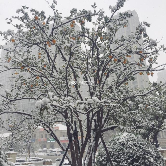 Nhìn tuyết rơi trắng xóa ở nơi diễn ra chung kết U23 Việt Nam  Uzbekistan, người hâm mộ nghĩ gì? ảnh 13