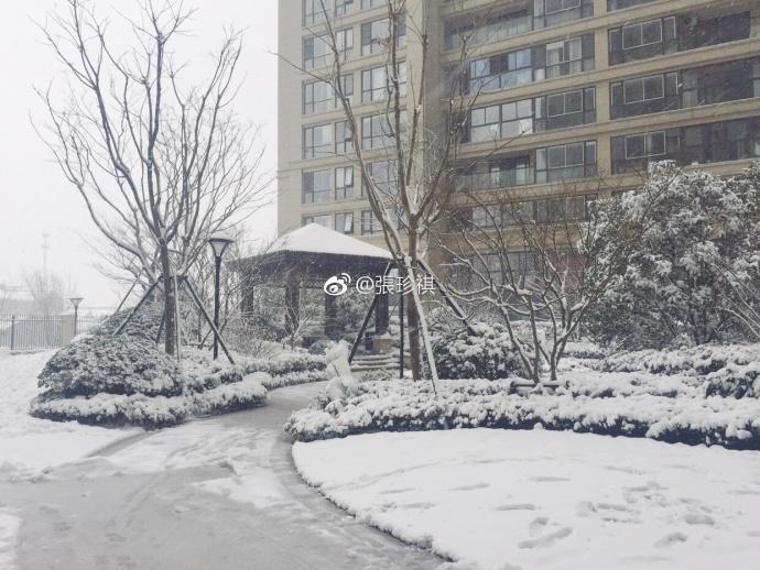 Nhìn tuyết rơi trắng xóa ở nơi diễn ra chung kết U23 Việt Nam  Uzbekistan, người hâm mộ nghĩ gì? ảnh 10