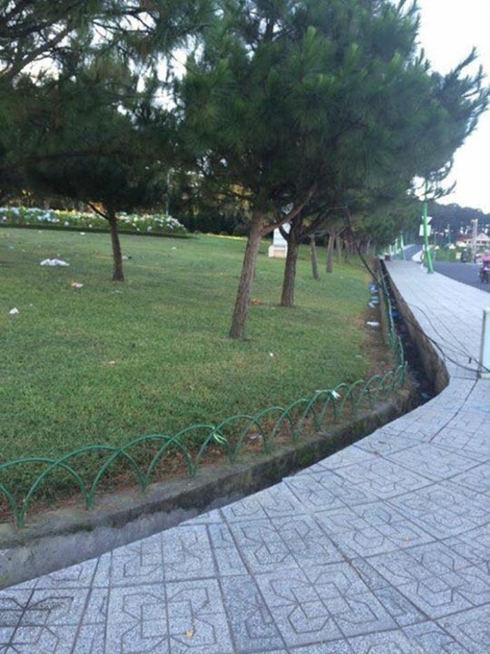 Rác trên bãi cỏ ở công viên Yersin. Ảnh: Thông Tin Đà Lạt