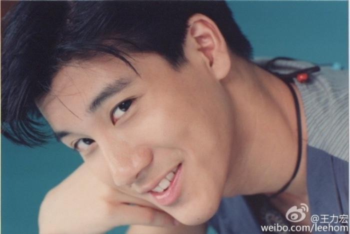 Mặc dù chỉ mới học tiếng Hoa từ năm 18 tuổi, Wang hiện đã tự viết lời Hoa cho nhiều ca khúc của mình. Anh có thể chơi được rất nhiều nhạc cụ âm nhạc. Anh từng biểu diễn piano, violin, trống, guitar, bass, vibraphone, hảrmonica, đàn nhị, đàn nguyệt, đàn tranh, sáo, và nhiều nhạc cụ khác trong album cũng như liveshow của mình. Anh thậm chí còn từng được mời làm nhạc trưởng cho dàn nhạc giao hưởng nổi tiếng Hong Kong Philharmonic và trở thành ca sĩ nhạc pop đầu tiên của châu Á có vinh dự này.