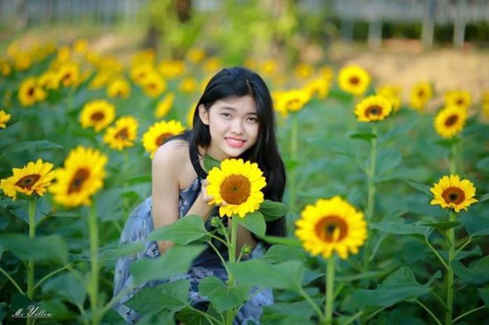 Sắc vàng của hoa hướng dương đã thu hút rất nhiều bạn trẻ, đặc biệt là các bạn nữ đến chụp ảnh, thăm quan.