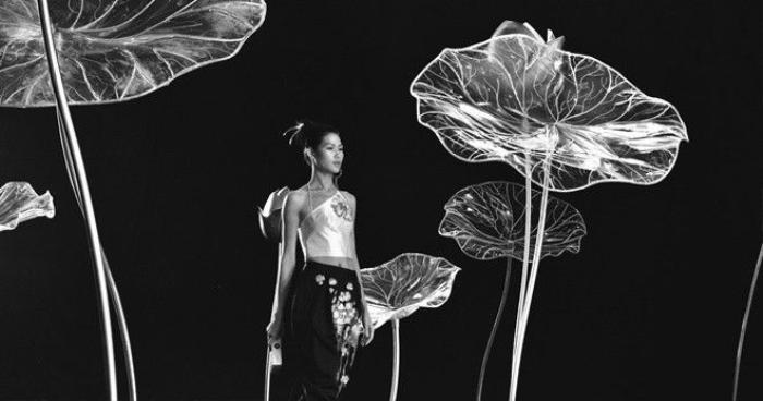 Hình ảnh hoa sen Việt tỏa sáng hàng đêm trên sàn diễn catwalk mang lại nhiều niềm cảm hứng cho tất cả những ai yêu thời trang suốt một tuần vừa qua.