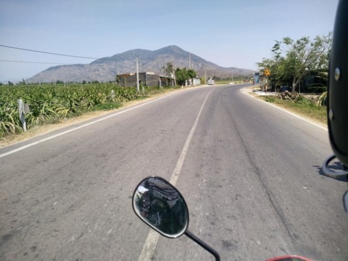 Những đoạn đường thẳng tắp với vườn cây thanh long khi tiến về Mũi Né (Bình Thuận).