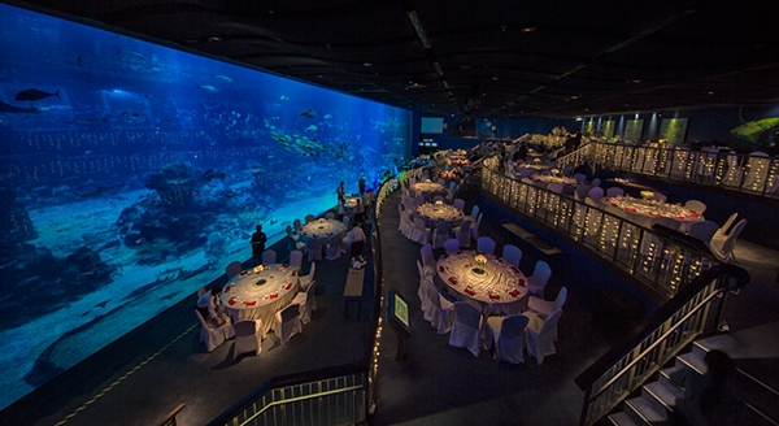 Khách khứa vừa theo dõi lễ cưới, vừa chiêm ngưỡng cảnh đẹp đại dương