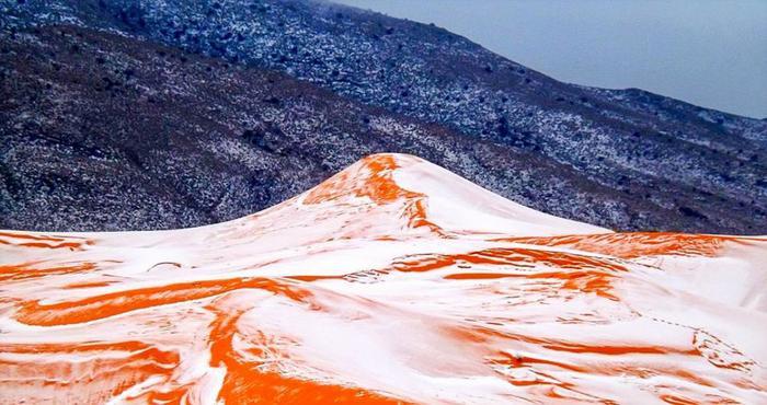 Những hình ảnh hiếm hoi tại sa mạc Sahara.