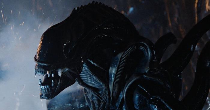 Trải qua 4 phần phim trong thế kỷ XX, loài quái vật Xenomorph trở thành nỗi ám ảnh trong mắt người xem.