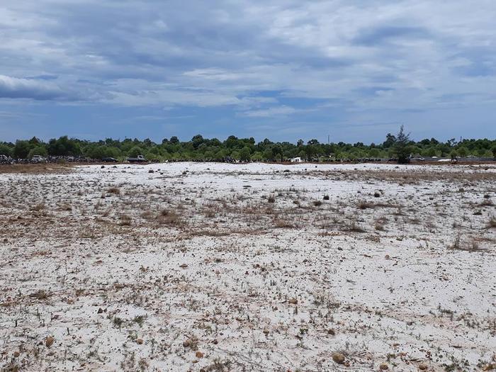 Bãi cát hoang nơi phát hiện thi thể cháu bé. Ảnh:FB P.P.T