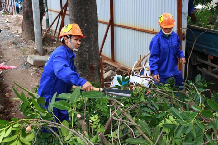 Công nhân đang miệt mài chặt thu gọn cành cây.
