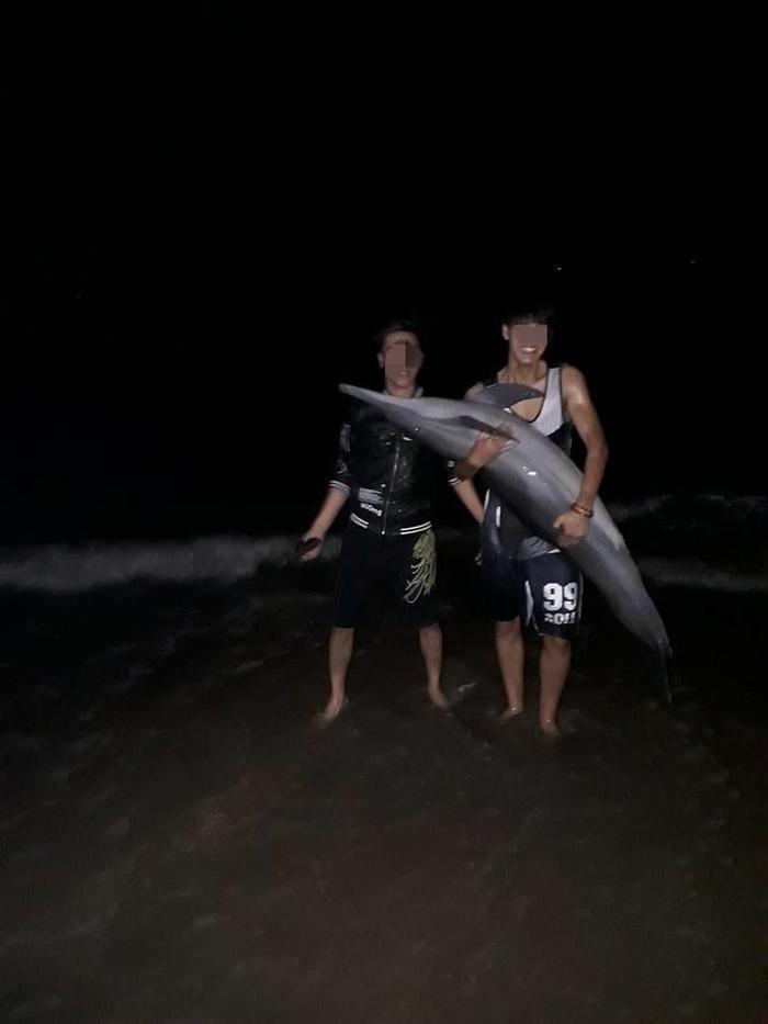 Ngay sau khi phát hiện, nhóm thanh niên này đã thả cá heo về lại biển. Ảnh: BEATVN