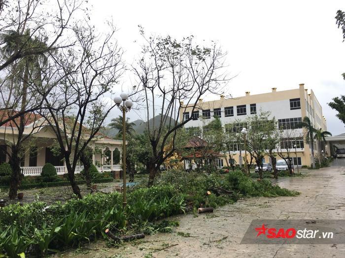 Khung cảnh xơ xác do bị ảnh hưởng từ bão của Dimond Bay Resort – nơi các thí sinh Miss Universe Vietnam đang sinh hoạt.