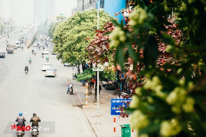 Tiếp theo là đường Trần Duy Hưng.