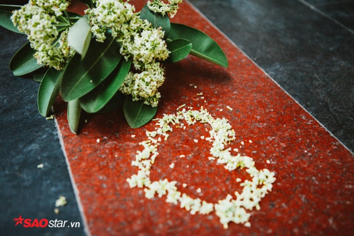 Loài hoa đi vào thơ ca và thường gắn với những chuyện tình lãng mạn.