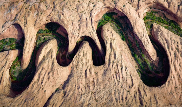 David Swindler đã giành được giải thưởng bức ảnh được yêu thích nhất hạng mục trên cho bức ảnh đầy ấn tượng này. Bên dưới núi đá ngoằn nghoèo là thảm thực vật xanh rì đầy sức sống tại Utah.