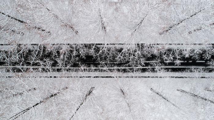 Vị trí thứ hai trong hạng mục Trên không thuộc về Takahiro Bessho. Những cây phủ tuyết trắng xóa, xen kẽ trên một con đường ở Takashima, Nhật Bản.