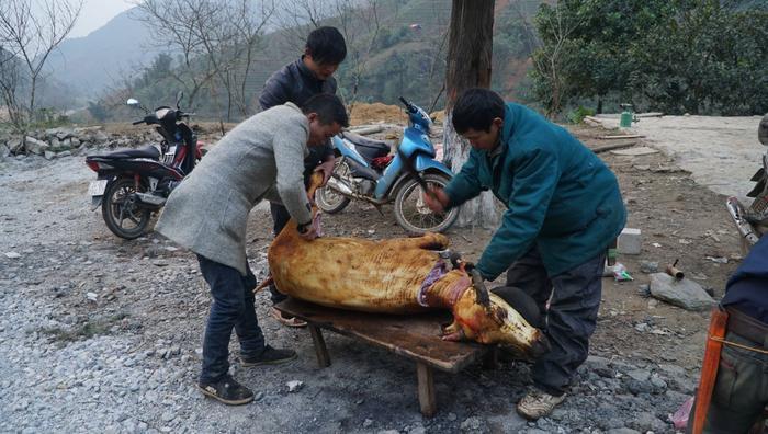 Người dân phải giết thịt bán dọc quốc lộ với giá rẻ.