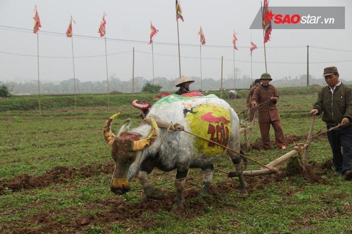 Nghi lễ cày tịch điền có ý nghĩa khai mở một năm lao động, mong ước mưa thuận, gió hòa, mùa màng bội thu.