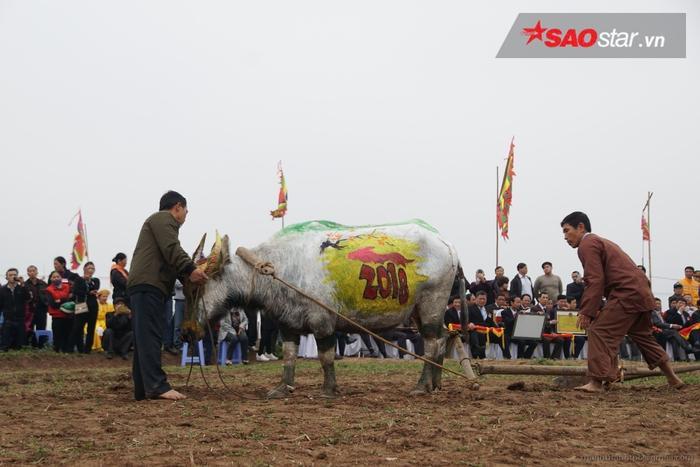 Đây là năm thứ mườitỉnh Hà Nam tái hiện lại nghi lễ ngày vua Lê Đại Hành về cày tịch điền trên cánh đồng dưới chân núi xã Đọi Sơn.