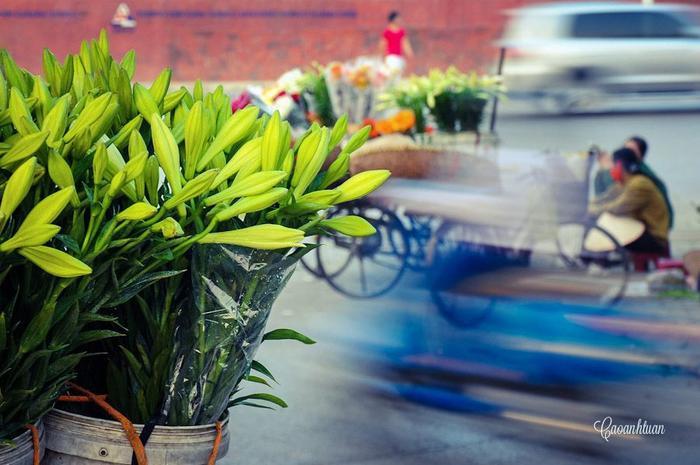 Trên những con phố Hà Nội những ngày đầu tháng Tư này, hoa loa kèn đã bắt đầu khoe sắc. Loài hoa mang màu trắng tinh khôi ấy gợi nhắc cho những ai bận rộn nhất, vội vã nhất cũng nhận ra tháng Tư đã về.