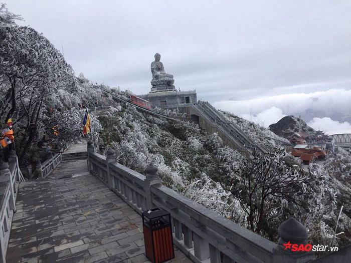 Khung cảnh khác lạ ở đỉnh Fansipan khiến nhiều khách du lịch bất ngờ.
