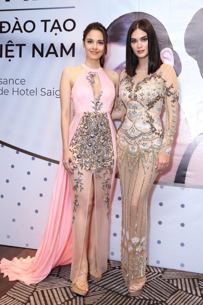 Được biết thiết kế của Audrey Hiếu Nguyễn từng được cựu Hoa hậu Hoàn vũ thế giới Pia Wurtzbach diện trong sự kiện ra mắt Trung tâm đào tạo Hoa hậu diễn ra cách đây không lâu ở TP.HCM.