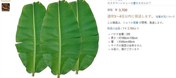 """Lá chuối rao bán trên trang Amazon Nhật Bản với mức giá vô cùng """"cắt cổ"""". Cụ thể, một chiếc lá chuối tươi được bán với giá 2.280 yên (gần 500.0000 đồng/lá). Nếu mua 2 lá giá chỉ còn 1.980 yên/lá (tương đương hơn 400.000 đồng); mua 3 lá, giá chỉ khoảng 760.000 đồng và nếu cần sử dụng nhiều thì mua theo combo 5 chiếc lá chuối với giá 1.168.000 đồng."""