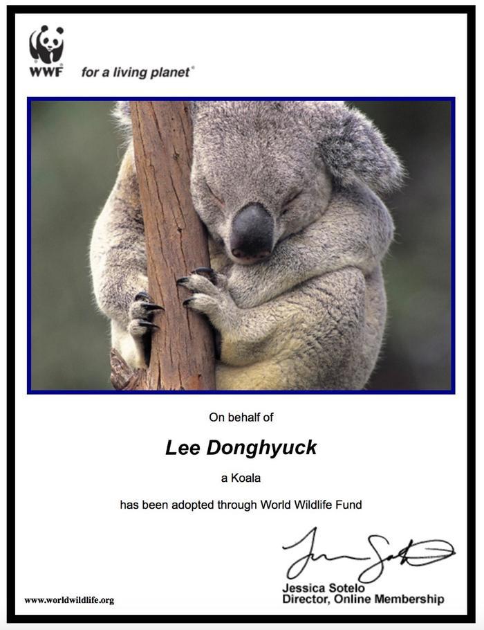 Bên cạnh đó, các bạn cũng quyết định nhận nuôi chú gấu Koala dưới tên thật của Haechan. Hoạt động này nhằm bảo vệ những chú gấu có nguy cơ lâm vào tuyệt chủng.
